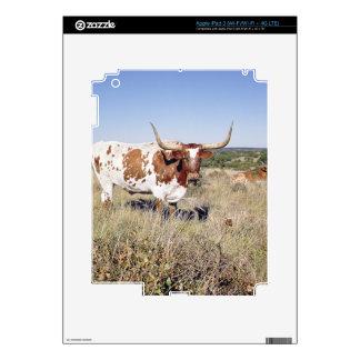 Texas Longhorn Breed (photo) Skin For iPad 3