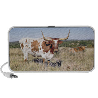 Texas Longhorn Breed (photo) iPod Speakers