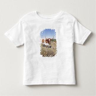 Texas Longhorn Breed (photo) Toddler T-shirt
