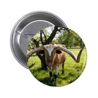 Texas Longhorn Bull Button
