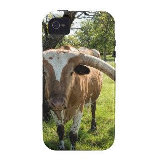 Texas Longhorn Bull Case-Mate iPhone 4 Covers