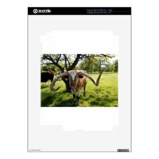 Texas Longhorn Bull Decals For The iPad 2