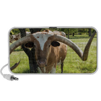 Texas Longhorn Bull Speaker