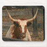 Texas Longhorn Bull Steer Mousepad