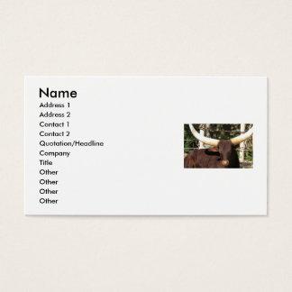 TEXAS LONGHORN business cards