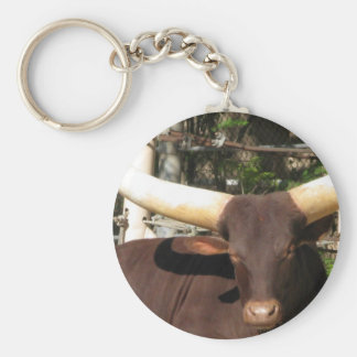 Texas Longhorn cattle Basic Round Button Keychain