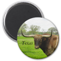 Texas Longhorn Round Magnet