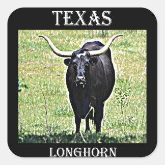 Texas Longhorn Square Sticker