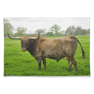 Texas Longhorn Standing in a Field Placemat