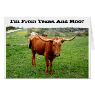 Texas Longhorn With Funny Texas Saying Cards