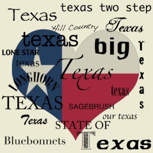 Armadillo Shaped Texas Flag Trendy Hippie Caps