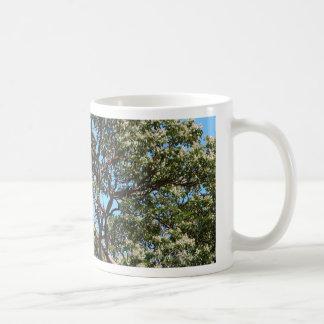 Texas Madrone Classic White Coffee Mug
