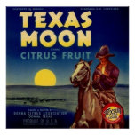 Texas Moon Citrus Fruit Crate Label Poster