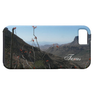 Texas Mountains Landscape with Ocotillo iPhone SE/5/5s Case