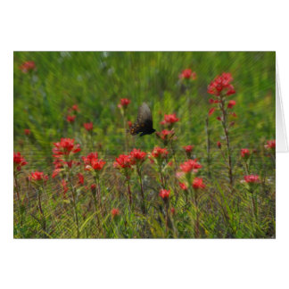 Texas Paintbrush and Butterfly Greeting Card