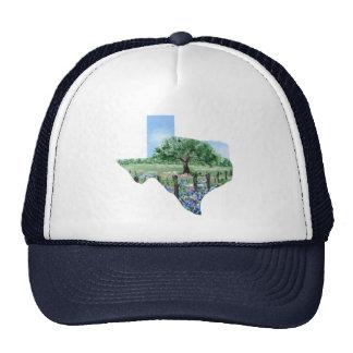 Texas Painting Trucker Hat