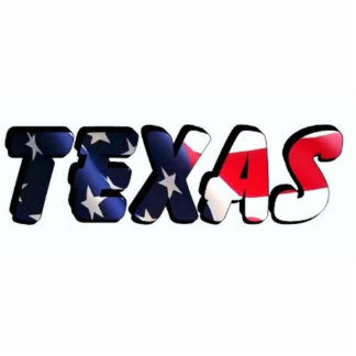Texas Photo Sculpture Keychain