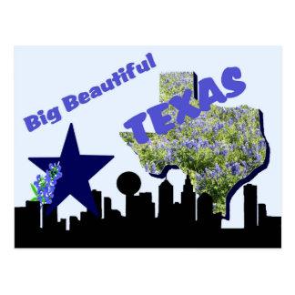 Texas Post card