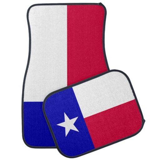 Texas state gay pride flag
