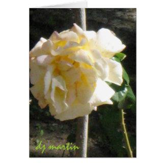 Texas Rose Card