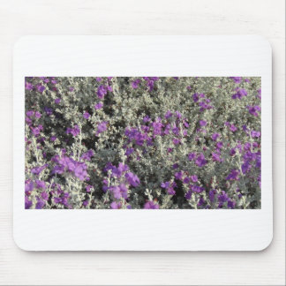 Texas Sage Customize It! Mouse Pad