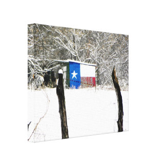 Texas Snow Stretched Canvas Print