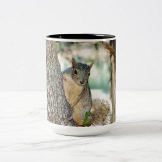Texas Squirrels Two-Tone Coffee Mug