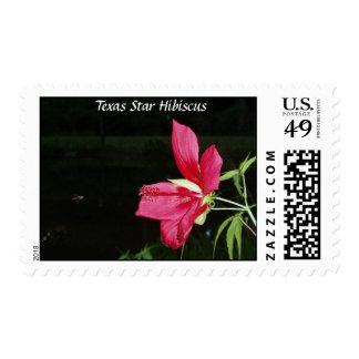Texas Star Hibiscus Postage