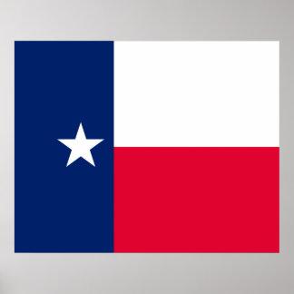 Texas State Flag Design Poster