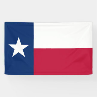 Texas state flag - high quality authentic color banner