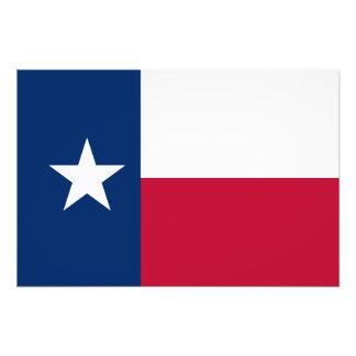 Texas State Flag Photo Print