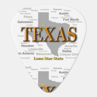 Texas State Map Guitar Pick