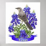 Texas State Mockingbird & Bluebonnet Flower Poster