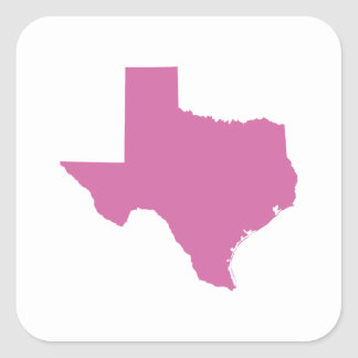 Texas State Outline Square Sticker
