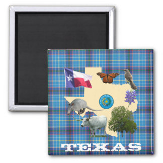 Texas State Symbols 2 Inch Square Magnet