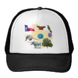 Texas State Symbols Mesh Hat