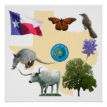 Texas State Symbols Print