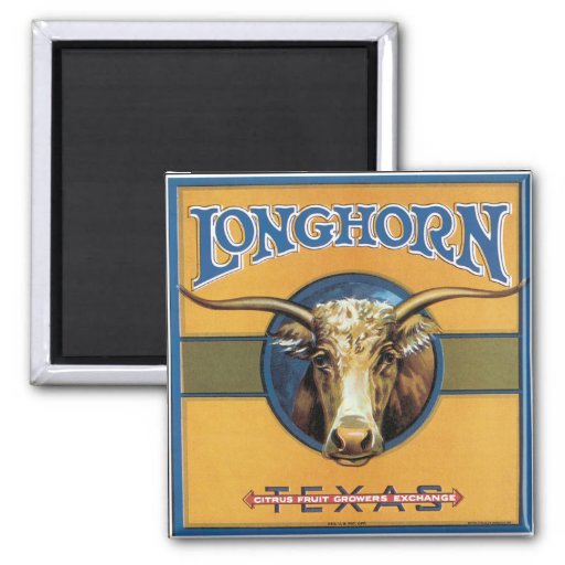 Texas Steer Longhorn 2 Inch Square Magnet