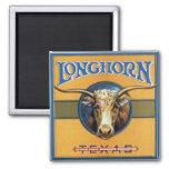 Texas Steer Longhorn Magnet