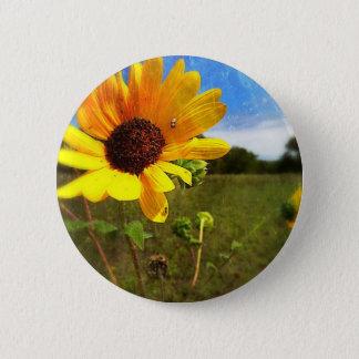 Texas Sunflowers by Jill Pinback Button
