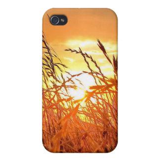 Texas Sunrise - iPhone 4 case