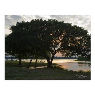 TEXAS sunset at the lake Postcard
