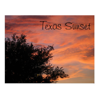 Texas Sunset Postcard