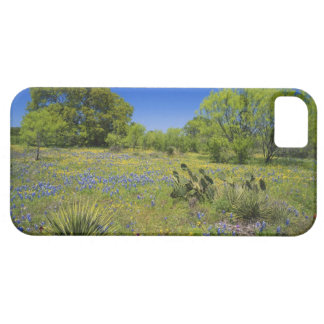 Texas, Texas Hill Country, Low bladderpod, iPhone SE/5/5s Case