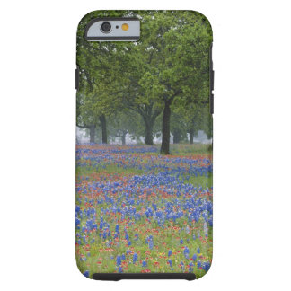 Texas, Texas Hill Country, Texas Paintbrush and Tough iPhone 6 Case
