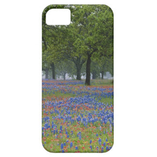 Texas, Texas Hill Country, Texas Paintbrush and iPhone 5 Cover