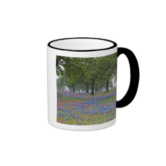 Texas, Texas Hill Country, Texas Paintbrush and Coffee Mugs