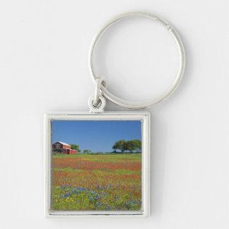 Texas, Texas Hill Country, Texas paintbrush Keychain