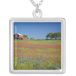 Texas, Texas Hill Country, Texas paintbrush Silver Plated Necklace