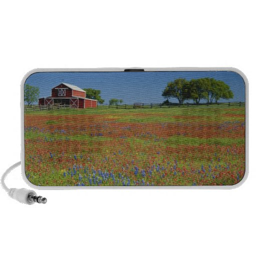 Texas, Texas Hill Country, Texas paintbrush Mp3 Speaker